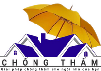 logo chongthamnetvn